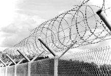 Cetățenii UE reținuți și expulzați